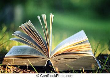 fiore, libro aperto, erba
