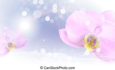 fiore, orchidea, illustrazione, 3d, eps10, realistico, fondo., vettore