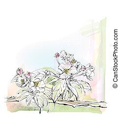 fiore, schizzo, albero, mela