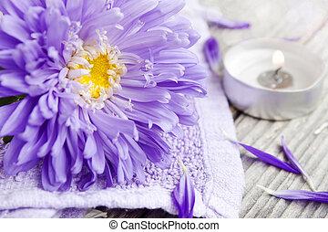 fiore, terme