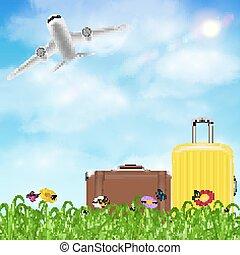 fiore, viaggiare, cielo, borsa, aeroplano, erba
