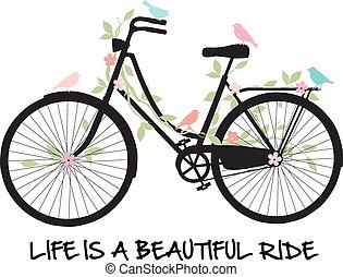 fiori, bicicletta, uccelli
