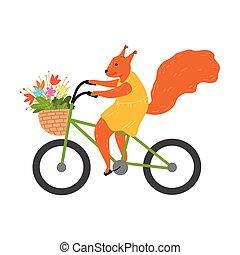 fiori, cesto, sentiero per cavalcate, portante, bicicletta rossa, scoiattolo, sorridente