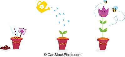 fiori, crescita, palcoscenici, -, tulipano, giardino