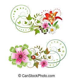 fiori, disposizione