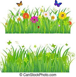 fiori, erba, insetti, verde