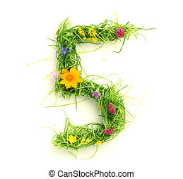 fiori, fatto, erba, numeri