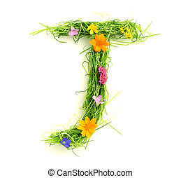 fiori, fatto, lettere, erba
