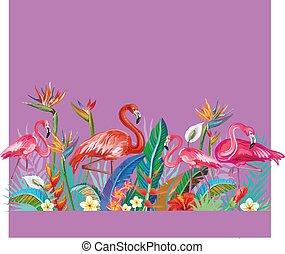 fiori, flamingoes, disposizione