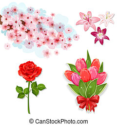 fiori, progetto serie, isolato, tuo