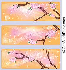 fiori, sakura, primavera, bandiere