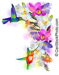 fiori, scheda, humming-birds