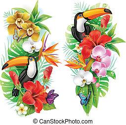 fiori, tropicale, farfalle, tucano