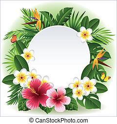 fiori, tropicale