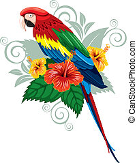 fiori tropicali, pappagallo