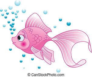 fish, carino