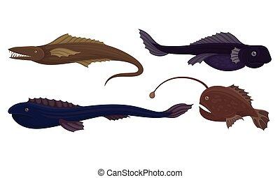 fish, creature, marino, mare, denti, profondo, set., vettore, affilato, pericoloso