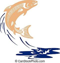 fish, salmone, isolato, acqua, saltare, atlantico