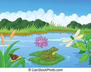fiume, cartone animato, rana