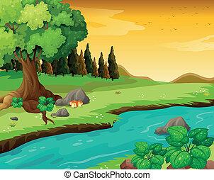 fiume, foresta, fluente