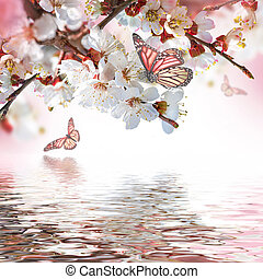 floreale, albicocca, fiori, fondo, primavera