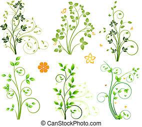 floreale, astratto, elementi, set