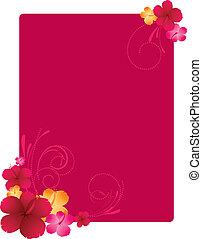 floreale, ibisco, cornice, fiori