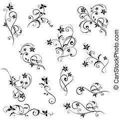 floreale, nero, disegno