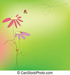 floreale, primavera, estate, scheda, coccinelle