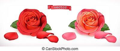 flower., rosa, realistico, vettore, 3d, icona