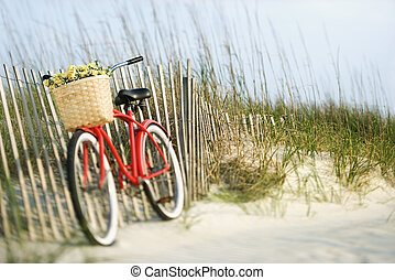 flowers., bicicletta