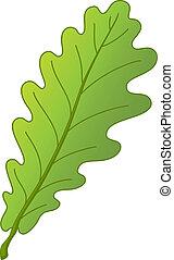 foglia, albero quercia