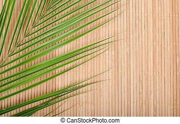 foglia, albero, tappeto, palma, fondo, bambù