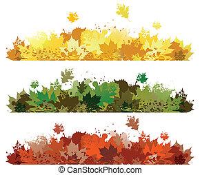 foglia autunno, disegno
