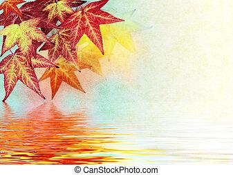 foglia autunno, riflessioni