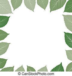 foglia, cornice, verde