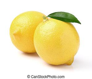 foglia limone, due, succoso