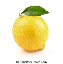 foglia limone, succoso