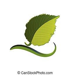 foglia, logotipo, ecologico