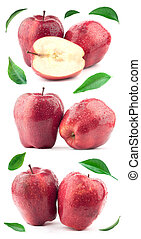 foglia, mela verde, rosso