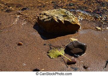 foglia, roccia