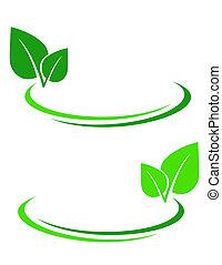 foglia, sfondo verde
