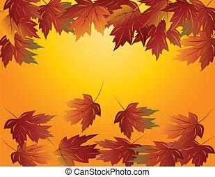 foglie, acero, illustrazione, cadere