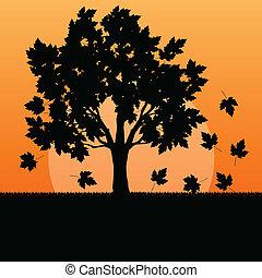 foglie, albero, autunno, vettore, acero, fondo, paesaggio