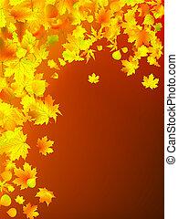 foglie, autunno, fondo