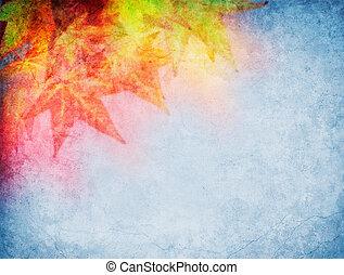 foglie, colorito, cadere