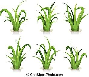 foglie, erba, set