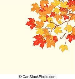 foglie, fondo, autunno