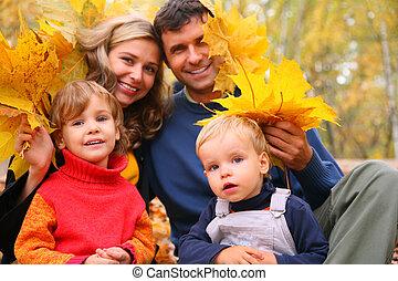 foglie, legno, acero, famiglia, giallo, quattro, autunno