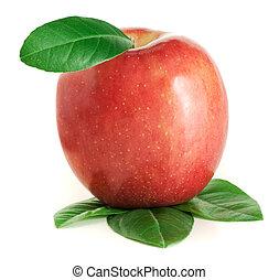foglie, mela verde, rosso